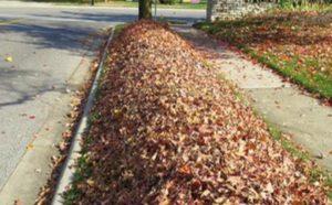 leaf pickup amherst ohio